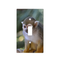 Amazing Squirrel Monkey Light Switch Cover