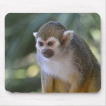 Amazing Squirrel Monkey Mouse Pad