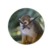 Amazing Squirrel Monkey Round Clock