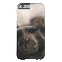 Cute Cotton Topped Tamarin Barely There iPhone 6 Case