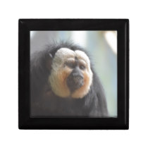 Saki Monkey Keepsake Box