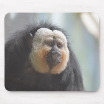 Saki Monkey Mouse Pad