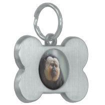 Saki Monkey Pet Tag