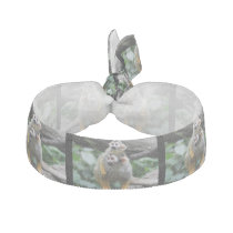 squirrel-monkey-29.jpg ribbon hair tie