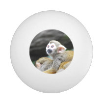 squirrel-monkey-39.jpg ping pong ball